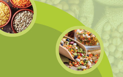 10th February 2019 – World Pulses day