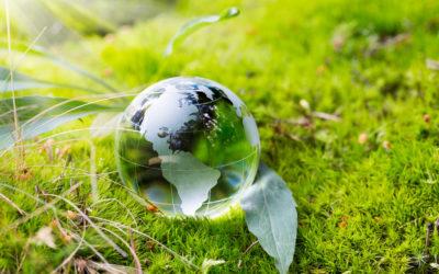 AMN Sustainability
